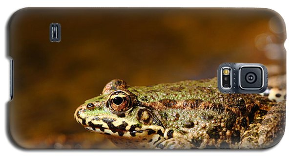 Galaxy S5 Case featuring the photograph Relaxed by Richard Patmore