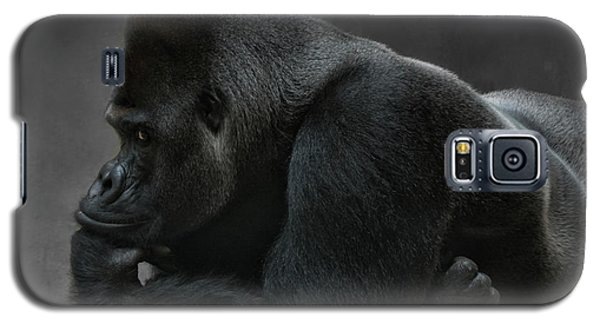 Gorilla Galaxy S5 Case - Relaxed Silverback by Joachim G Pinkawa