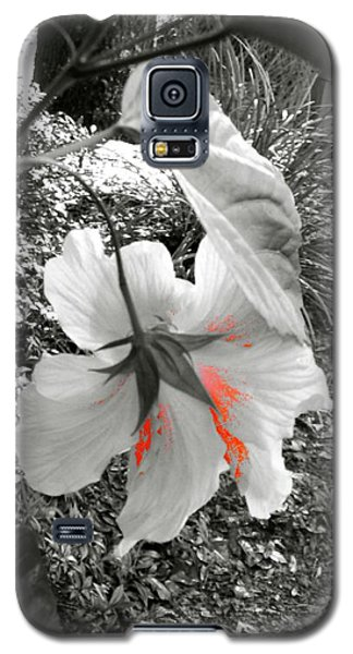 Galaxy S5 Case featuring the photograph Remembrance by Cathy Dee Janes