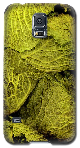 Renaissance Chinese Cabbage Galaxy S5 Case
