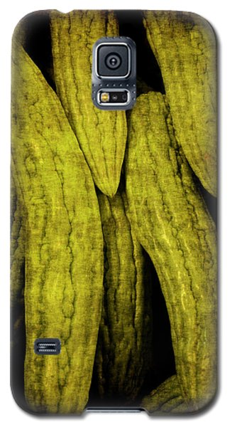 Renaissance Chinese Cucumber Galaxy S5 Case