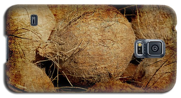 Renaissance Coconut Galaxy S5 Case