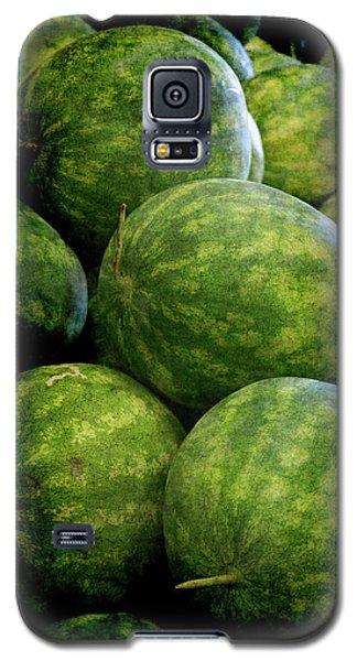 Renaissance Green Watermelon Galaxy S5 Case