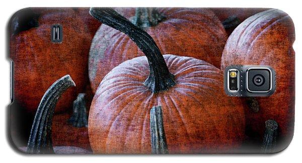 Renaissance Pumpkins Galaxy S5 Case