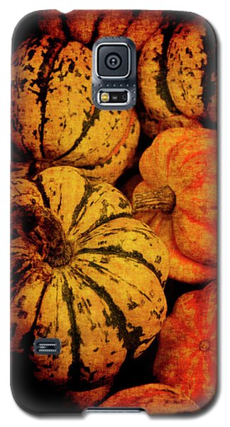 Renaissance Squash Galaxy S5 Case