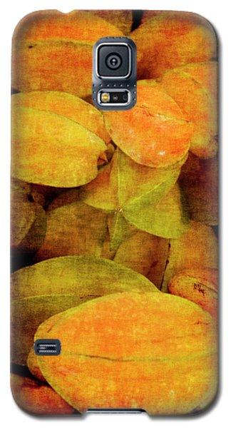 Renaissance Star Fruit Galaxy S5 Case