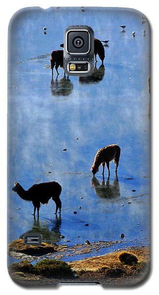 Galaxy S5 Case featuring the photograph Rendezvous by Skip Hunt