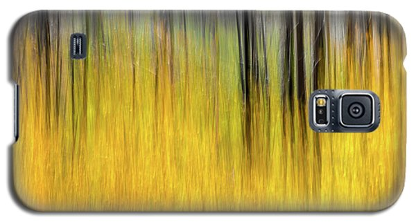 Renewal Abstract Art By Kaylyn Franks Galaxy S5 Case