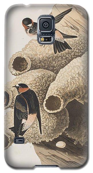 Republican Or Cliff Swallow Galaxy S5 Case by John James Audubon