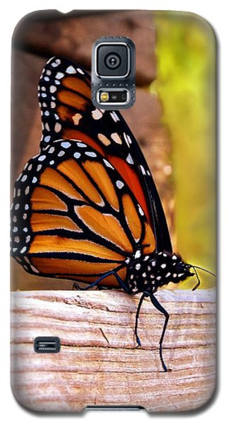Respite Galaxy S5 Case