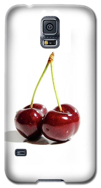 Resplendent Still Life Galaxy S5 Case