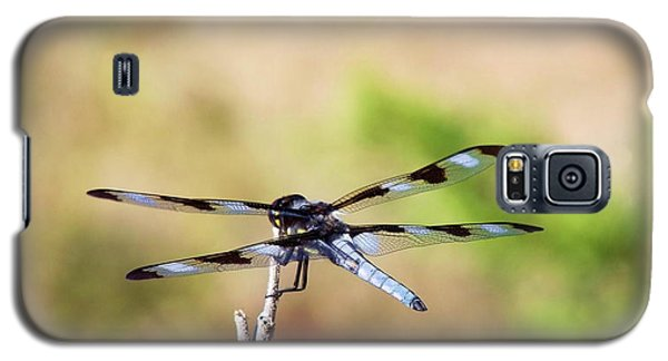 Rest Area, Dragonfly On A Branch Galaxy S5 Case
