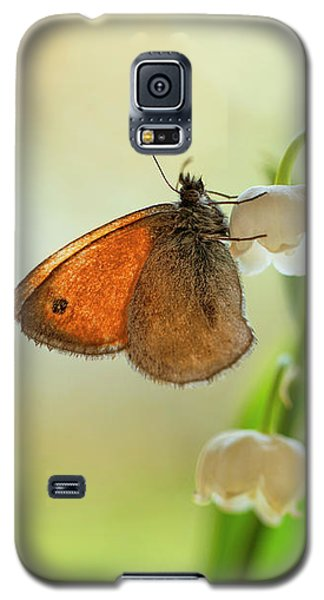 Rest In The Morning Sun Galaxy S5 Case