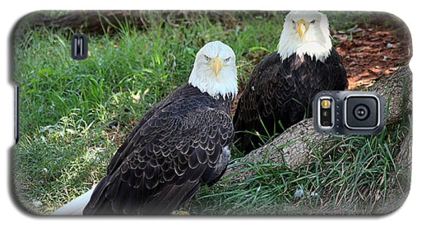 Resting Bald Eagles Galaxy S5 Case by Sheila Brown
