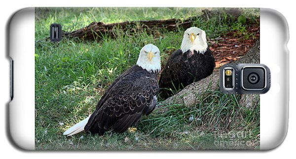 Resting Bald Eagles Galaxy S5 Case