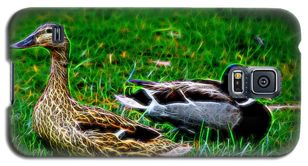Galaxy S5 Case featuring the photograph Resting Ducks by Mariola Bitner
