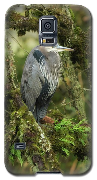 Galaxy S5 Case featuring the photograph Resting Great Blue Heron by Angie Vogel
