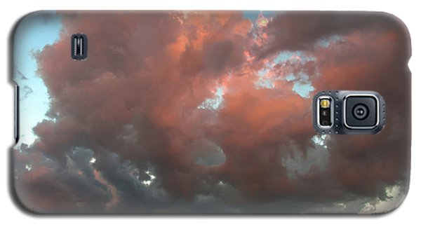 Galaxy S5 Case featuring the photograph Resting In The Sunset by Carolyn Dalessandro
