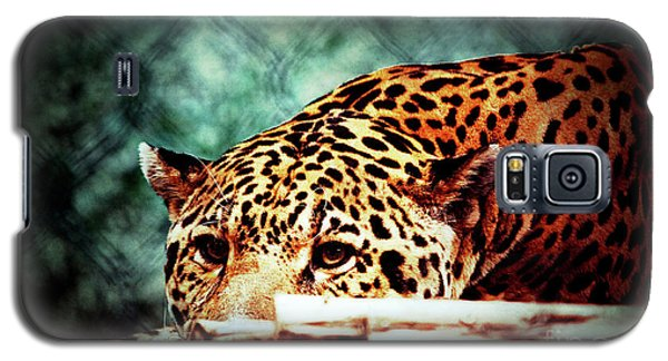 Resting Jaguar Galaxy S5 Case