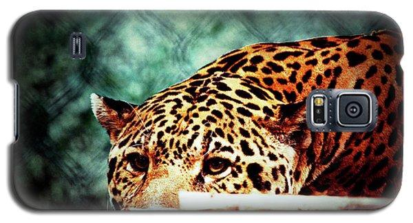 Resting Jaguar Galaxy S5 Case