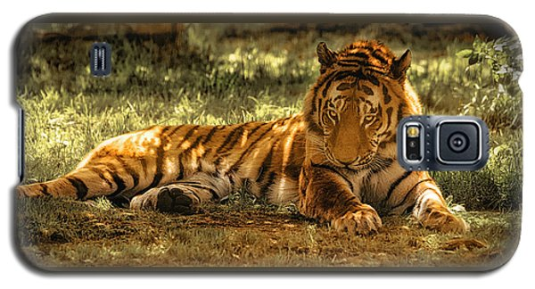 Galaxy S5 Case featuring the photograph Resting Tiger by Chris Boulton