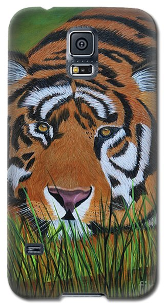 Galaxy S5 Case featuring the painting Resting Tiger  by Myrna Walsh