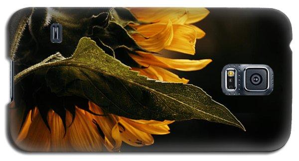 Reticent Sunflower Galaxy S5 Case