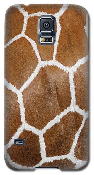 Reticulated Giraffe #2 Galaxy S5 Case