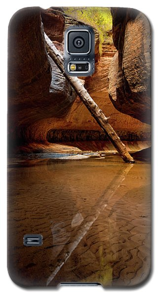 Galaxy S5 Case featuring the photograph Reunion by Dustin LeFevre