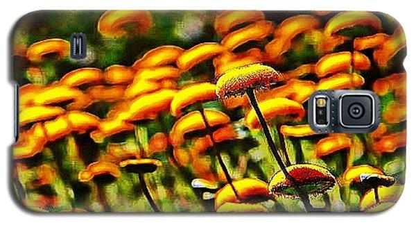 Reverie Galaxy S5 Case