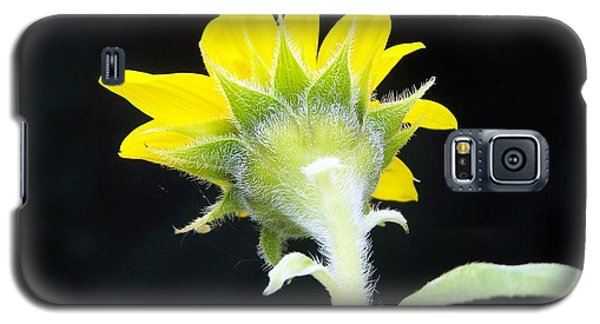 Reverse Sunflower Galaxy S5 Case