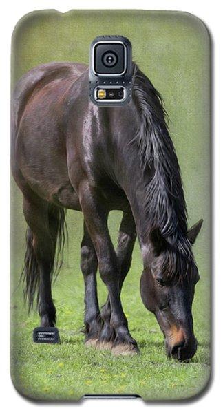 Rez Galaxy S5 Case by Debby Herold