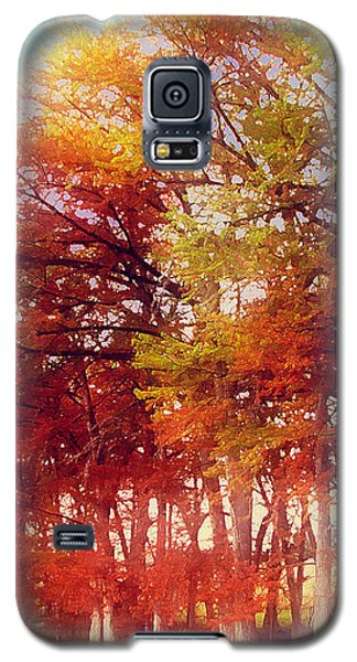 Galaxy S5 Case featuring the digital art Rhapsody In Fall by Wendy J St Christopher