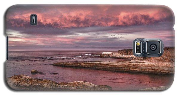 Rhapsody In Pink Galaxy S5 Case
