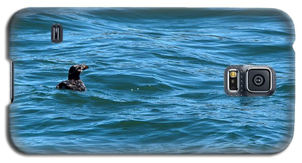 Rhinoceros Auklet Galaxy S5 Case by Linda Kerkau