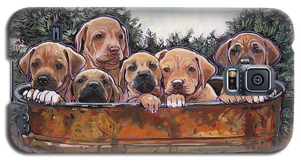Rhodesian Ridgeback Puppies Galaxy S5 Case