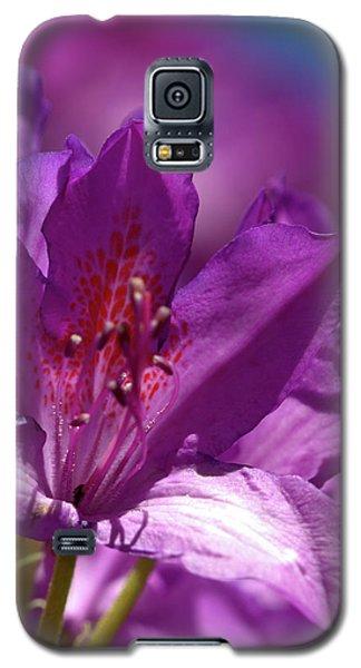 Rhododendron  Galaxy S5 Case by Baggieoldboy