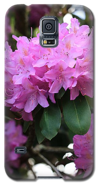 Rhododendron Beauty Galaxy S5 Case