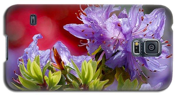 Rhododendron Bluebird Galaxy S5 Case