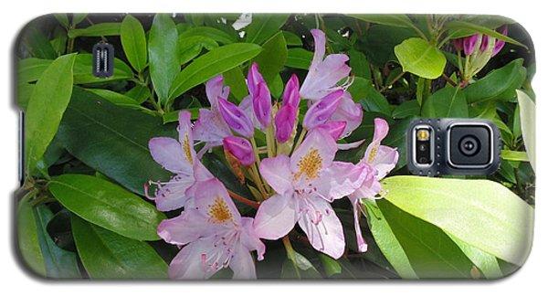 Rhododendron Galaxy S5 Case by Daun Soden-Greene