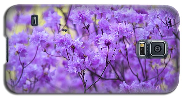 Galaxy S5 Case featuring the photograph Rhododendron In Bloom. Spring Watercolors by Jenny Rainbow