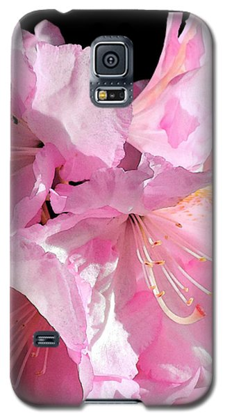 Rhododendron On Black Galaxy S5 Case