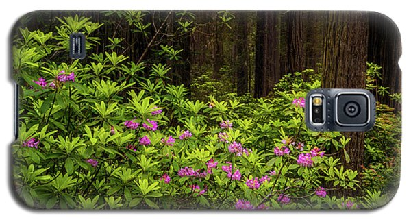 Rhododendrons Galaxy S5 Case