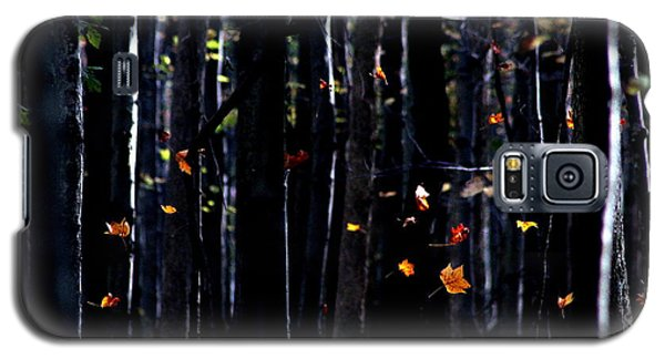 Galaxy S5 Case featuring the photograph Rhythm Of Leaves Falling by Bruce Patrick Smith