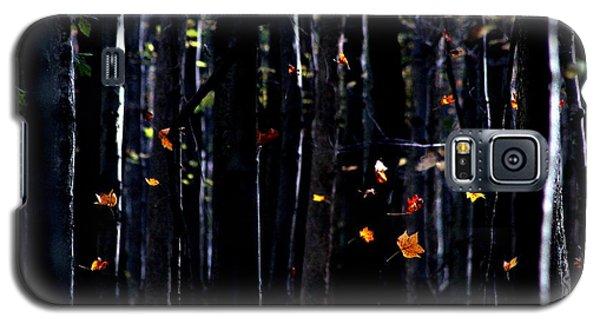Rhythm Of Leaves Falling Galaxy S5 Case