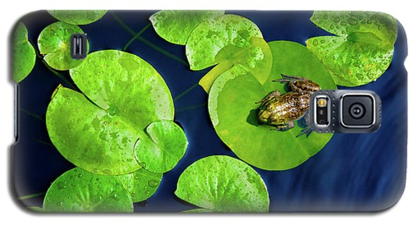 Galaxy S5 Case featuring the photograph Ribbit by Greg Fortier