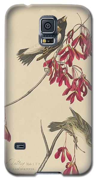 Rice Bunting Galaxy S5 Case