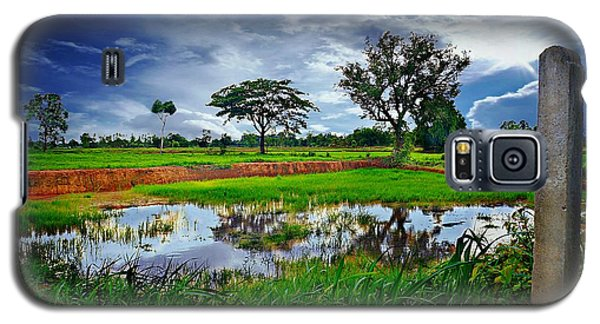 Rice Paddy View Galaxy S5 Case by Ian Gledhill