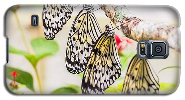 Rice Paper Butterflies Galaxy S5 Case