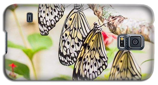 Rice Paper Butterflies Galaxy S5 Case